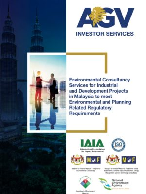 AGV Investor Services